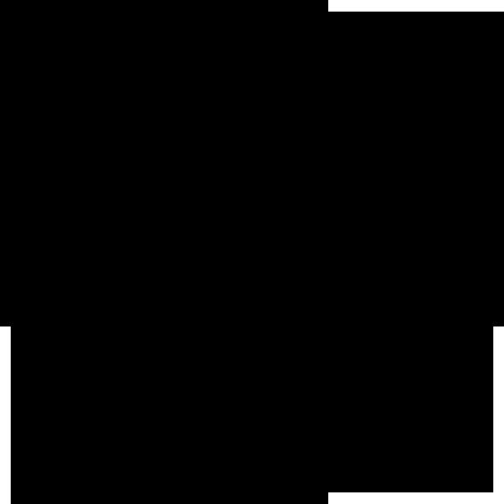 estrella-polar_logotipo_75px